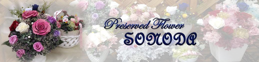 SONODA Preserved Flower